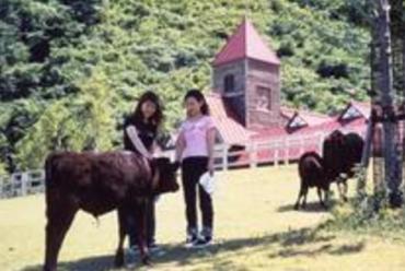 tourism_ol_44